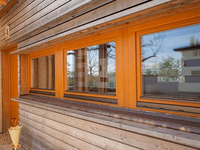 дубовые окна